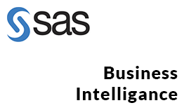 MIDDLEWARE-TECHNOLOGIES-SAS-business-intelligance