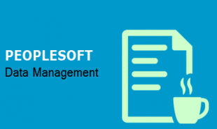 peoplesoft-data-management