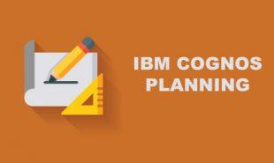 ibm-cognos-planning