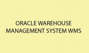 oracle-warehouse-management-system copy
